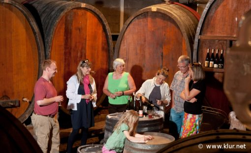 All about natural wines