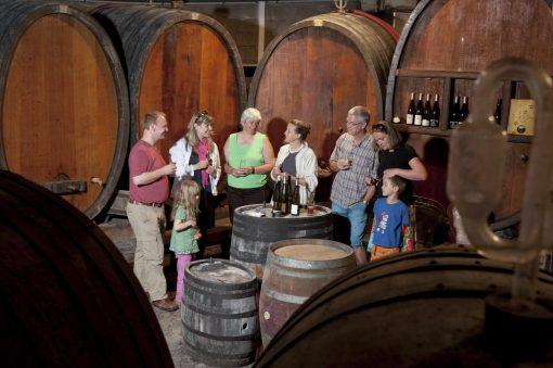 S'initier au vin nature
